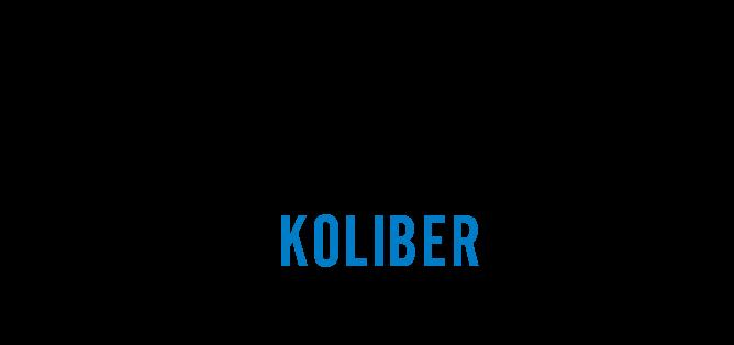 Stowarzyszenie Koliber